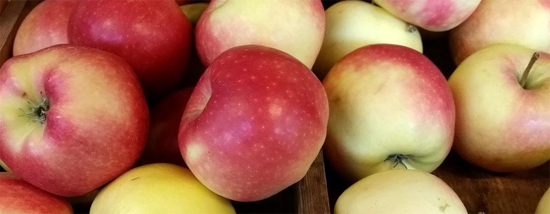 Äpfel von Obstbau Felten
