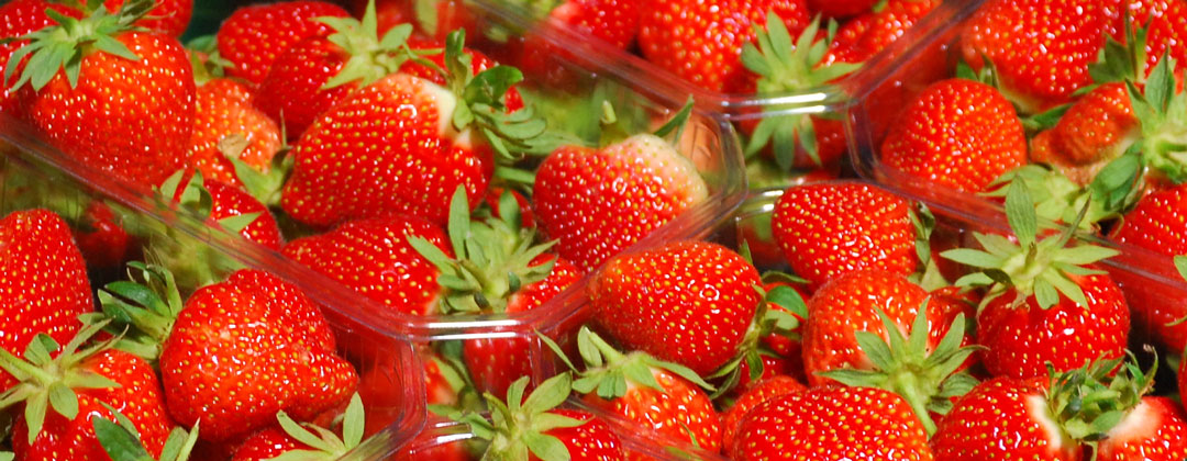 Erdbeeren von Obstbau Felten